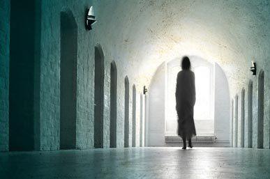 ParanormalSurvivor-BlueAntIntl-317